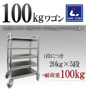 wagon100kg